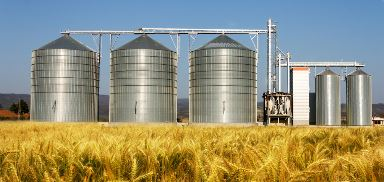 Warehousing Agricultural Commodities